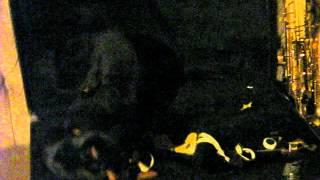Little Minuter Pincher Puppies In Saxophone Case