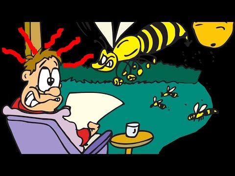 DIY Wespenfalle selber bauen / Fliegenfalle selber machen / Mückenfalle Flasche / Life hack Sommer