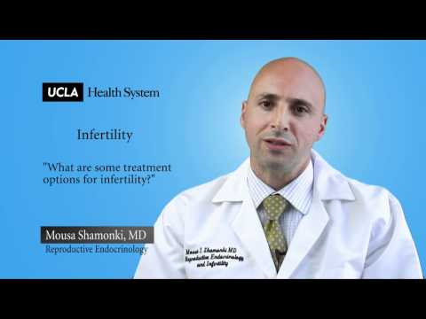 Real Questions | Infertility, Obstetrics and Gynecology UCLA