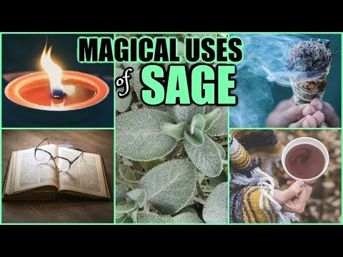 BENEFITS OF SAGE TO GET RID OF NEGATIVE ENERGY, REMOVE OBSTACLES, NIGHTMARES, ATTRACT YOUR DESIRES!