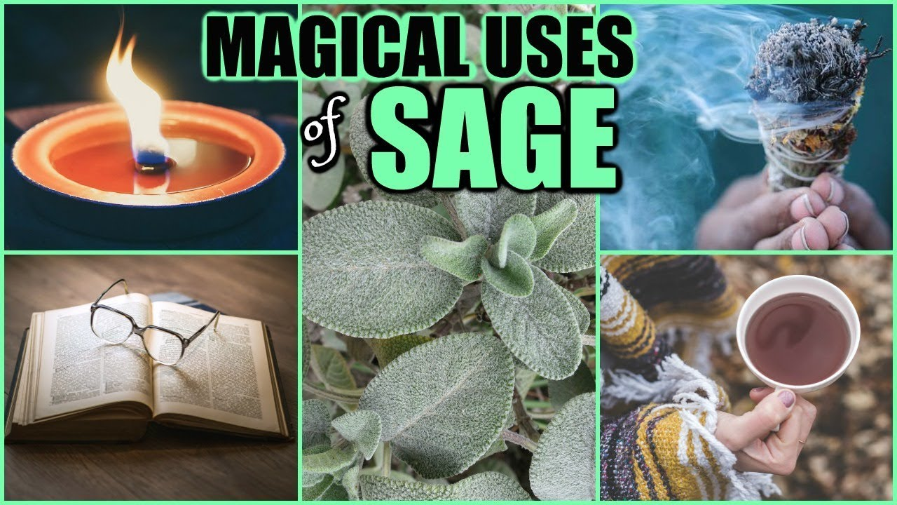 Benefits Of Sage To Get Rid Of Negative Energy Remove Obstacles Nightmares Attract Your Desires Youtube,Best Brown Color Combinations