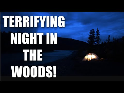 YOU WONT BELIEVE THESE TERRIFYING NOISES!  ALONE IN THE WOODS