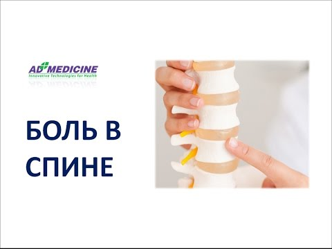 Лечение боли в спине. Если болит спина необходимо