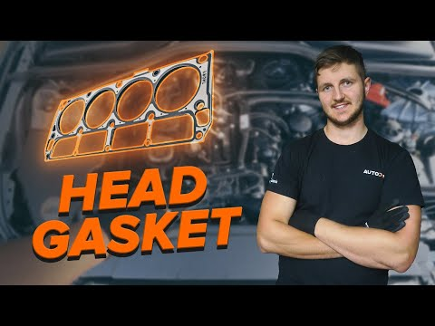 How to check your head gasket   AUTODOC