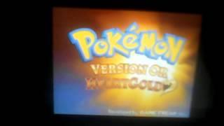 Pokemon version or HeartGold Nuzlocke Challenge