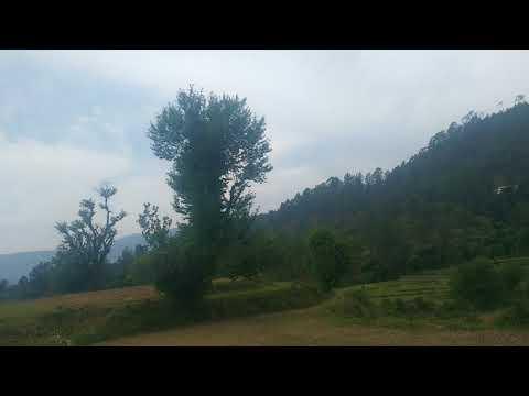 Walk in the greens - beautiful nature