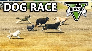 GTA V - Dog Race