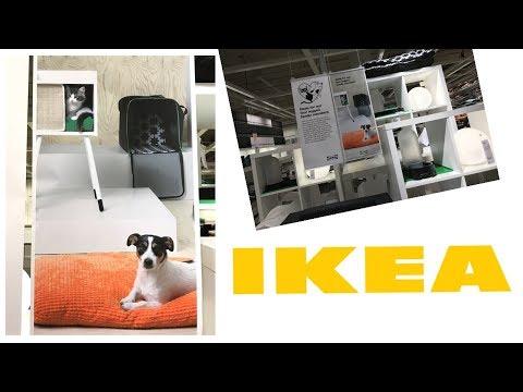 IKEA - TUDO SOBRE A SALVADORA DOS IMIGRANTES NO CANADA!