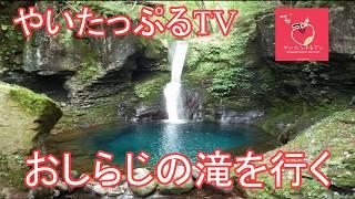 『幻の滝 おしらじの滝を行く』 やいたっぷるTV