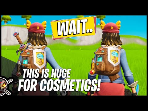 This Cosmetic Upgrade Could Be HUGE For Fortnite! (Fortnite Battle Royale)