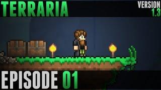 Terraria - #01 - Et c
