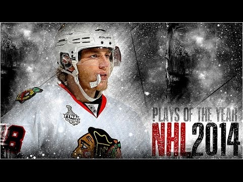 NHL's Plays of the Year 2014 [HD]
