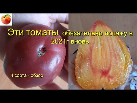 Какие  Томаты буду сажать Самые урожайные томаты  Самые  вкусные помидоры