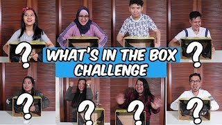 What's in the Box Challenge | with DKN 2 Cast