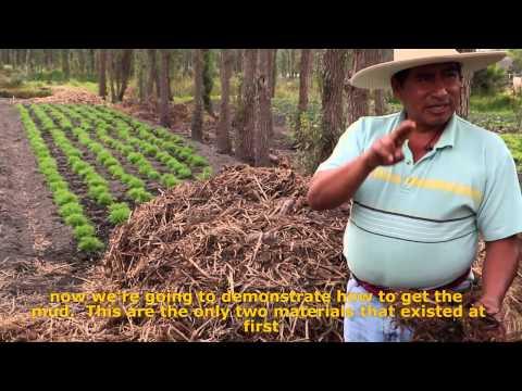 Hombres de Maíz : Mesoamerican Permaculture: Chinampas 2.0 Fundraising edition