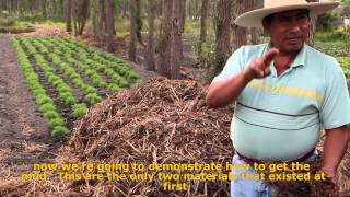 Hombres de Maíz : Mesoamerican Permaculture: Chinampas 2.0 Fundraising edition