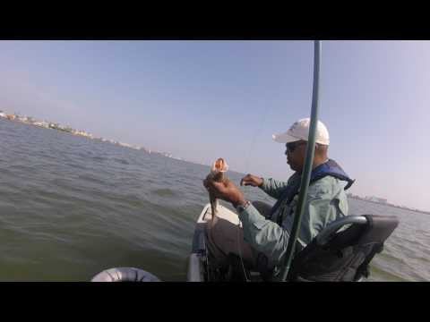 Berkley gulps in January for trout on Hooked Up Fishing Galveston Texas