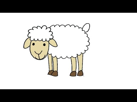 Learn to draw sheep