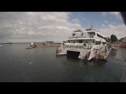 Whale Watching in Bar Harbor Maine on July 7, 2015