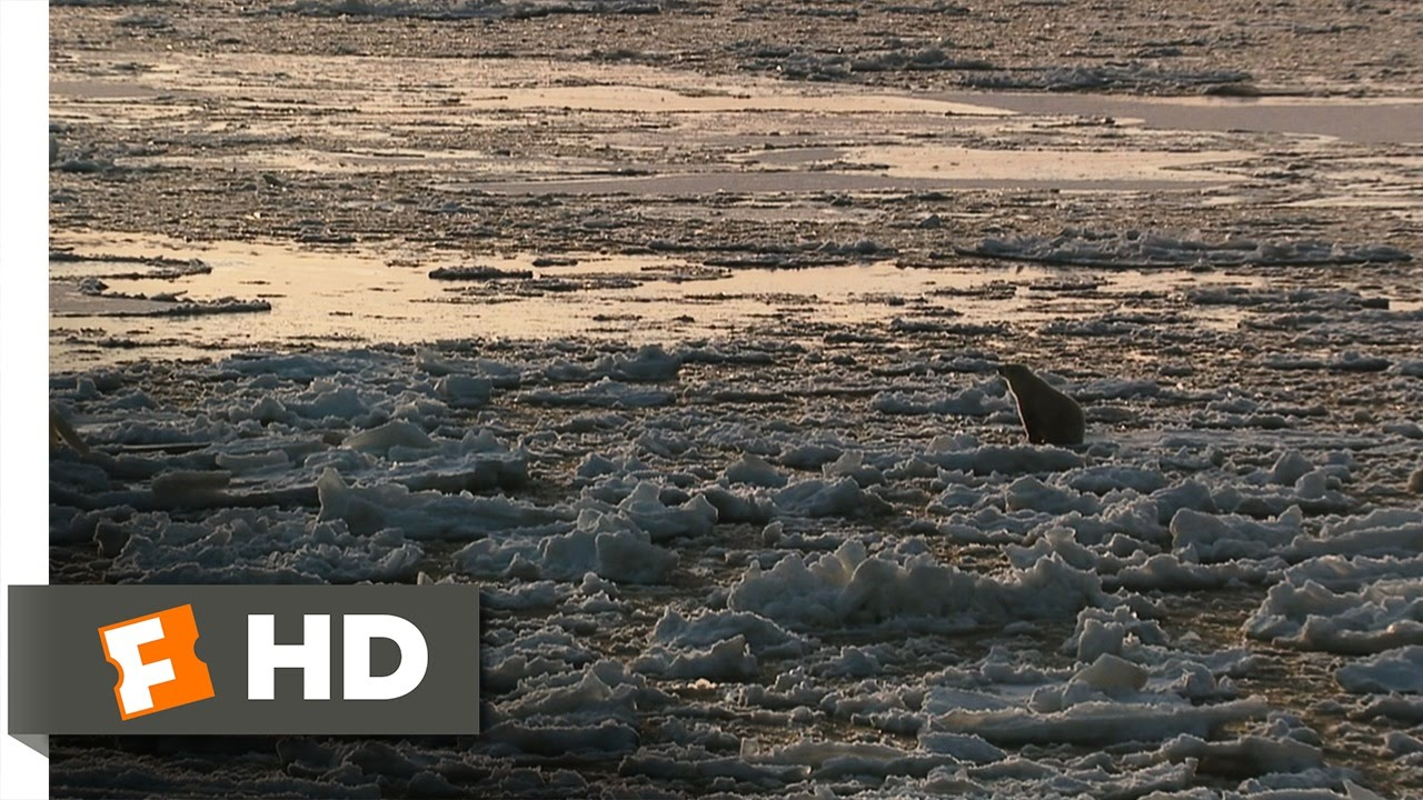 Download Arctic Tale (7/10) Movie CLIP - Melting Ice (2007) HD