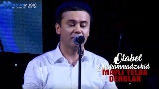 Otabek Muhammadzohid -  Mayli telba denglar (Concert Version)