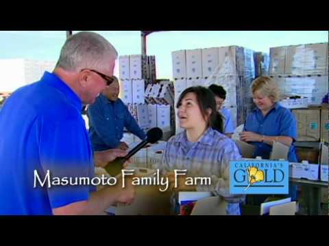 Californias Gold #12008 - MASUMOTO FAMILY FARM