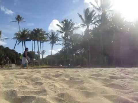 Trade Winds in Waikiki