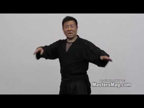The Art of Hollywood Ninja Action Film Making - Vol-2 by Sho Kosugi