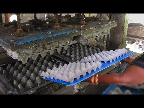 Best Egg Trays Making Machine Factory Using Waste Paper | Fully Auto Egg Cartoon Making / SSI
