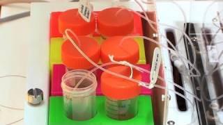 DNAを用いた革新的なバイオセンサー技術 - 富士通研究所 : DigInfo