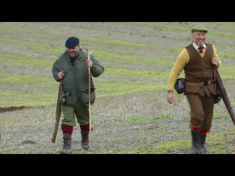 pheasant and partridge shooting with ''Andy's Team''