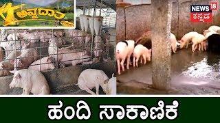 ಅನ್ನದಾತ   Pig Farming Success Story   June 30, 2019