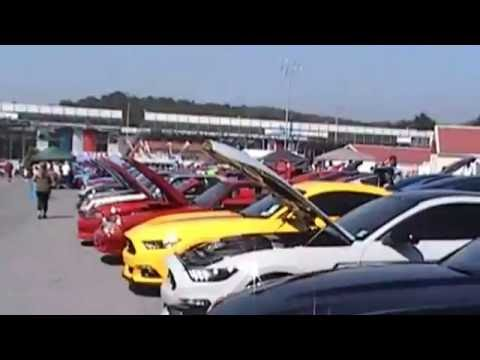 American muscle Car show 2016 Mustangs