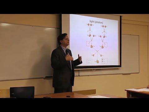 Molecular biology, functional biochemistry and deuterobolomics in scriptures