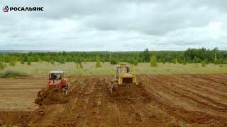 Новый  бульдозера Б10М на строительстве дороги в рес. Марий Эл. Купить новый бульдозер Б10М