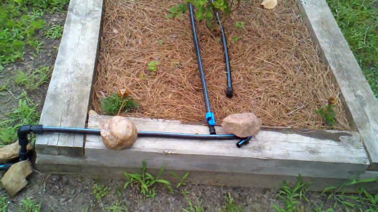 Drip Irrigation Install in Raised Bed Garden - YouTube