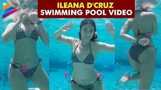 Ileana D'Cruz Swimming Pool Video   Actress Ileana   Celebrities Private Videos   Telugu Filmnagar