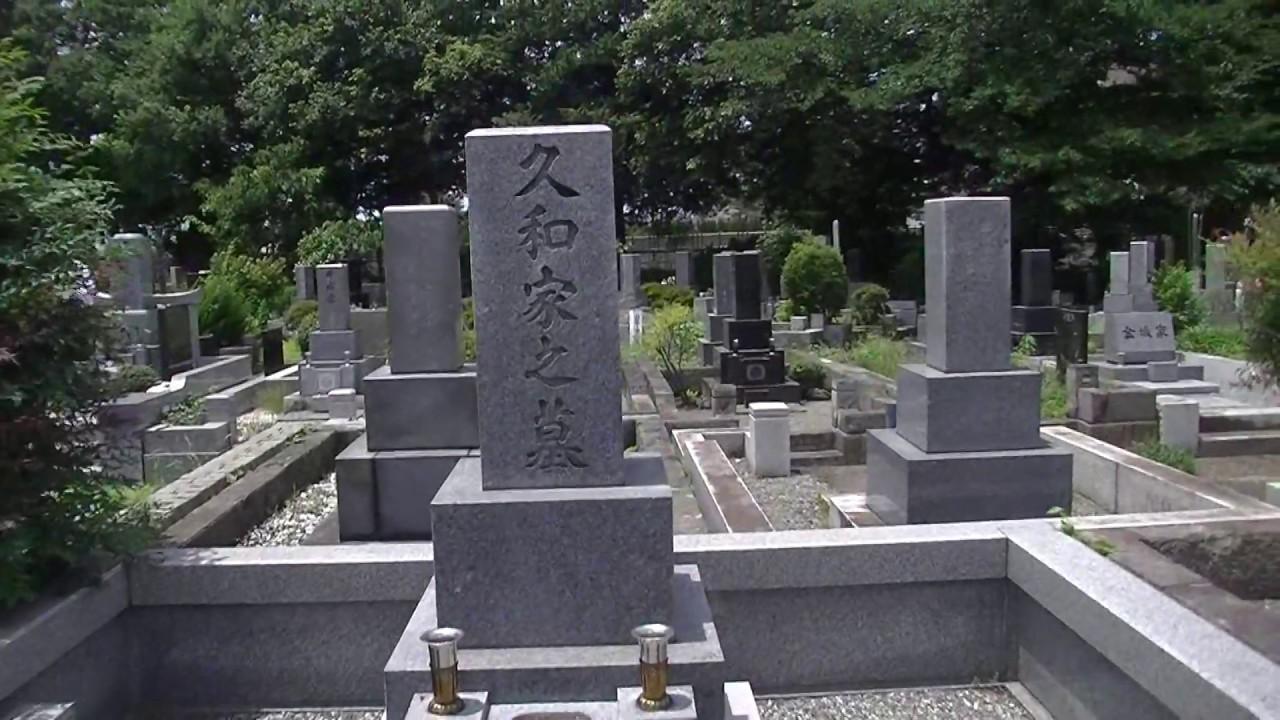 掃苔シリーズ】キャスター 久和...