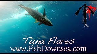 Fish Downsea Tuna Flares