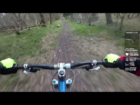 Drop like a Stonor - MTB Chilterns