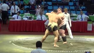 Сумо.Чемпионат мира по Сумо 2014(BRA vs  GEO)