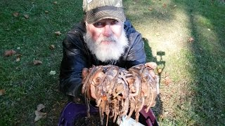 How to keep worms in the Winter with the Worm Gitter