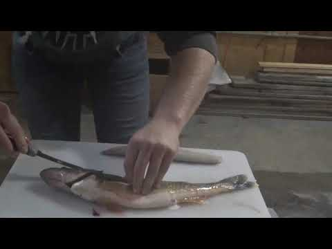 """Zipping A Walleye! Removing The """"Mud Line"""""""