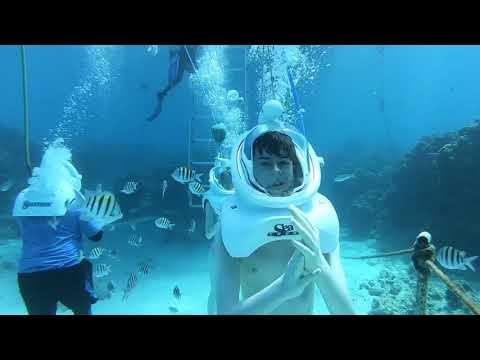 Cayman Islands Sea Trek 1
