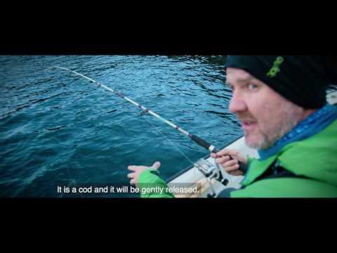 Fischschmuggler in Norwegen: 285 Kilo Fisch mehr ausgeführt und hart bestraft