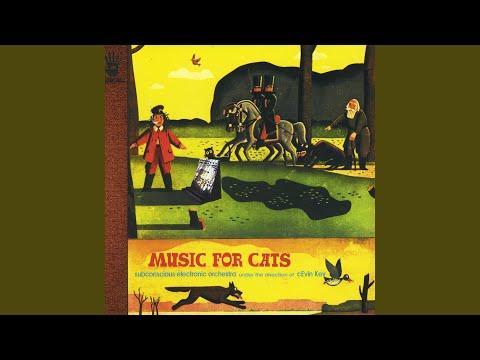 Musik Fur Cats