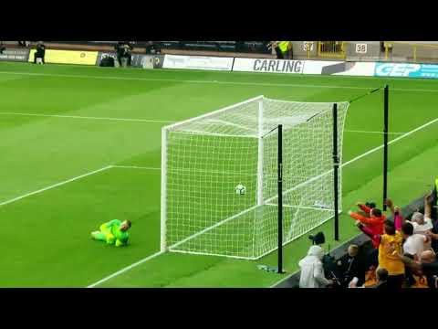 Premier League: Assista AO VIVO Cardiff x Wolverhampton, dia 30/11, às 18h00