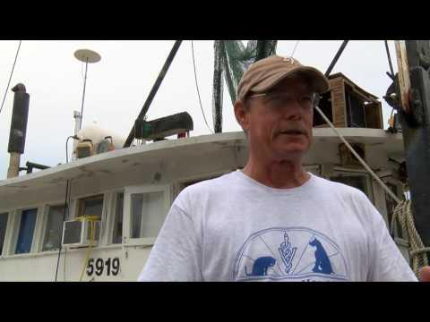 Fresh Off the Boat - Delcambre Direct Seafood