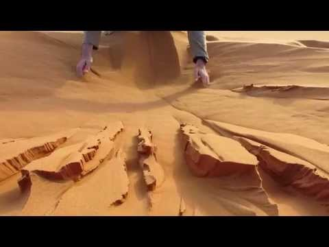 Playing in the sand (Sahara)