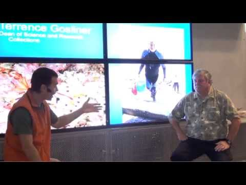 Dr. Terry Gosliner: Connect with an Academy Scientist | California Academy of Sciences